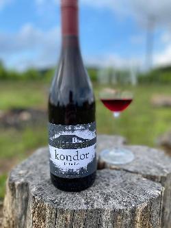 Clements Kondor kékfrankos Száraz vörösbor